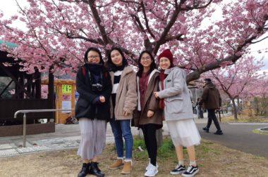 2019.02.22~静岡県 つるし飾り体験・河津桜見学~
